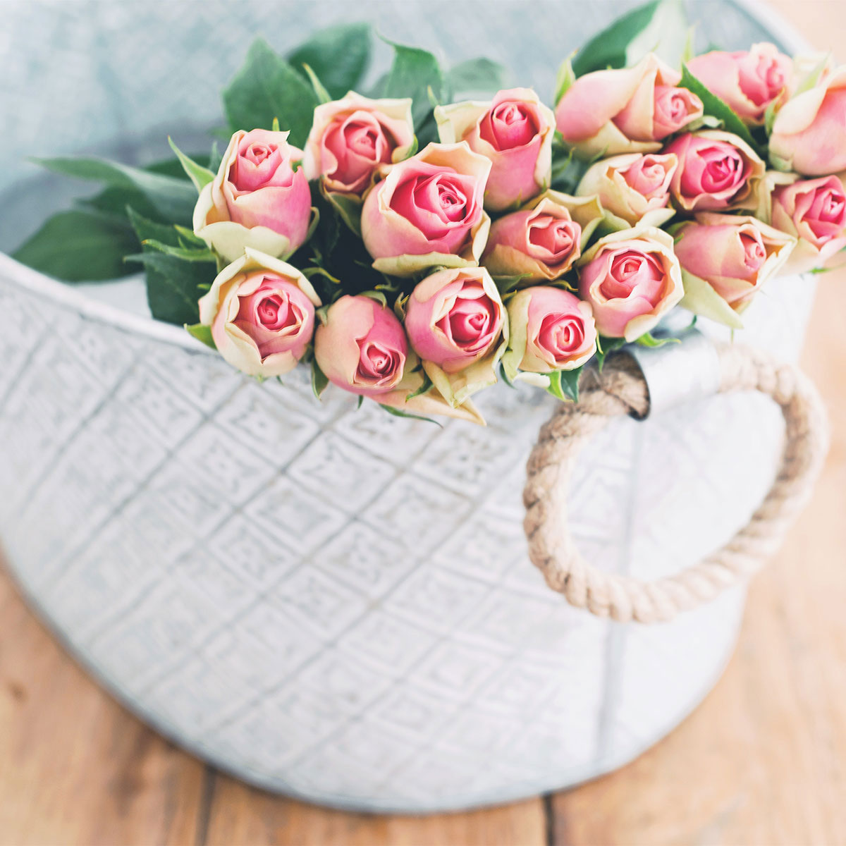 Why you should never buy a bouquet of roses for your valentine despite being a bit of an overrated holiday were fans of celebrating love every day of the year valentines day is undoubtedly huge with the typical izmirmasajfo